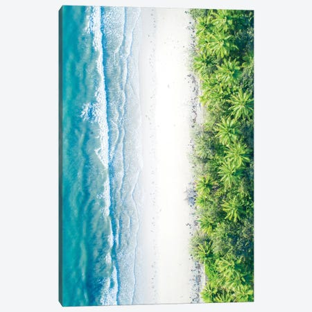 Where The Jungle Meets The Sea II Canvas Print #JXR92} by Jaxon Roberts Art Print