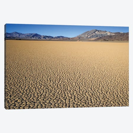 Usa, California, Death Valley National Park. Arid Playa. Canvas Print #JYG1005} by Jaynes Gallery Canvas Artwork