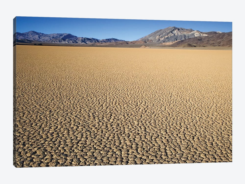 Usa, California, Death Valley National Park. Arid Playa. by Jaynes Gallery 1-piece Canvas Art