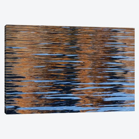 Usa, California, Sierra Nevada Range. Bishop Creek Reflects Autumn Colors. Canvas Print #JYG1030} by Jaynes Gallery Canvas Art