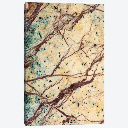 Usa, California. Detail Of Cut Slab Of Marble Rock. Canvas Print #JYG1042} by Jaynes Gallery Canvas Print