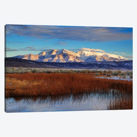 Usa, California. White Mountains And Reeds In Pond. Canvas Print #JYG1048} by Jaynes Gallery Canvas Print