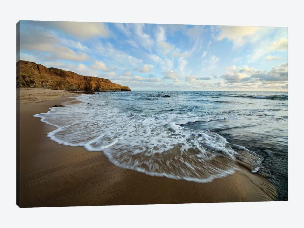 USA, California, San Diego. Beach at Sunset Cliffs Park. by Jaynes Gallery 1-piece Art Print