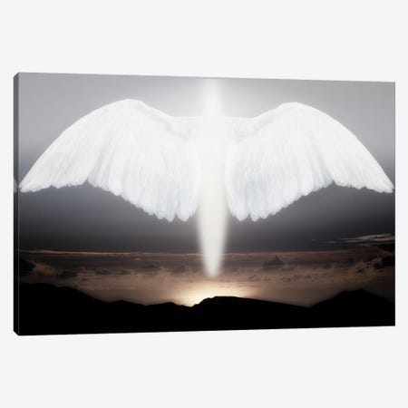 Artistic creation of angel or spirit Canvas Print #JYG1052} by Jaynes Gallery Canvas Art