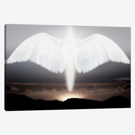 Artistic creation of angel or spirit Canvas Print #JYG1052} by Jaynes Gallery Canvas Art