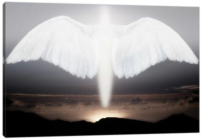 Artistic creation of angel or spirit Canvas Art Print