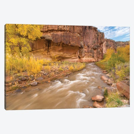 USA, Utah, Capitol Reef National Park. Fremont River and trees in autumn. Canvas Print #JYG1067} by Jaynes Gallery Canvas Artwork