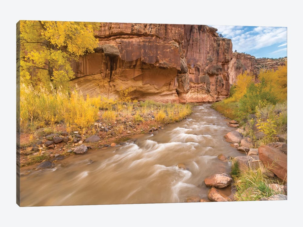 USA, Utah, Capitol Reef National Park. Fremont River and trees in autumn. by Jaynes Gallery 1-piece Canvas Art