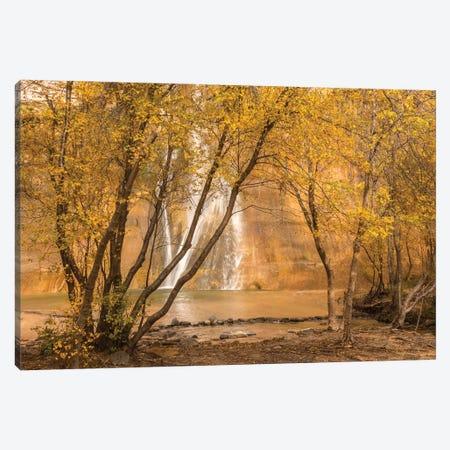 USA, Utah, Grand Staircase-Escalante National Monument. Lower Calf Creek Falls and trees. Canvas Print #JYG1069} by Jaynes Gallery Art Print