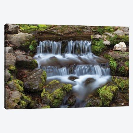 USA, California, Yosemite National Park. Fern Spring waterfall. Canvas Print #JYG119} by Jaynes Gallery Canvas Print