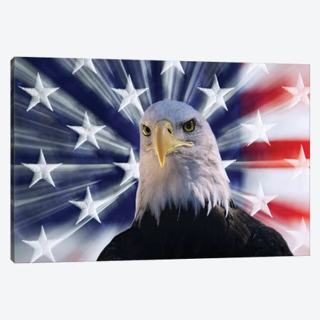 USA, California. Composite of bald eagle and American flag. Canvas Print #JYG121} by Jaynes Gallery Canvas Wall Art