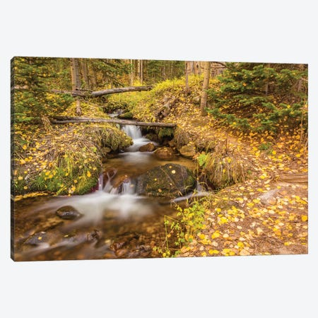 USA, Colorado, Rocky Mountain National Park. Waterfall in forest scenic II Canvas Print #JYG126} by Jaynes Gallery Canvas Print
