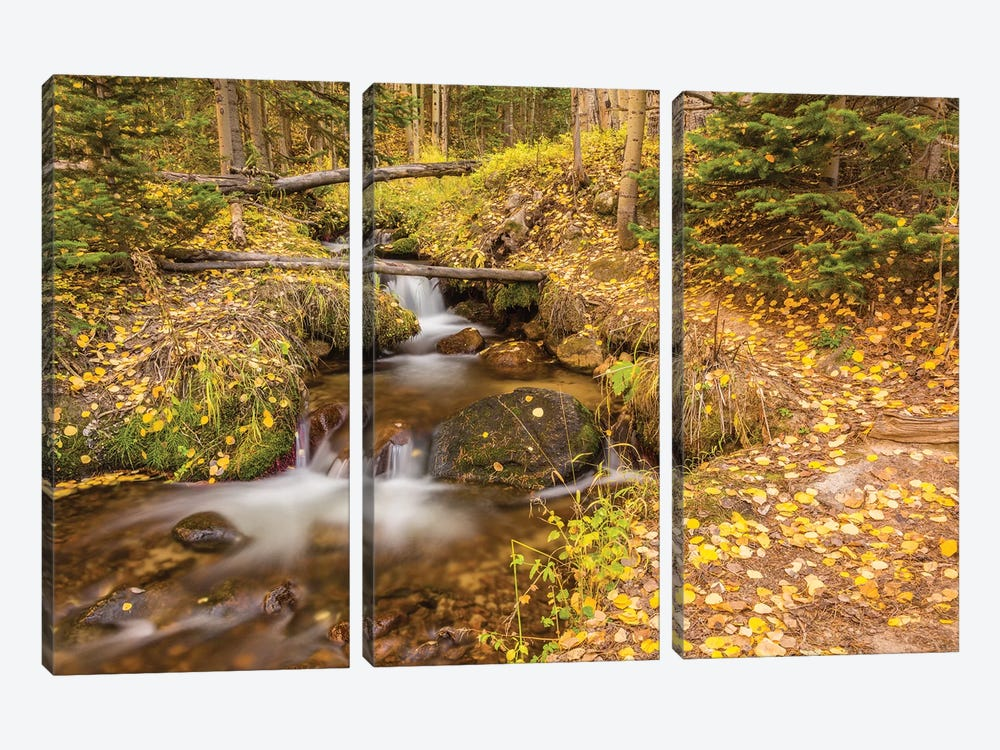 USA, Colorado, Rocky Mountain National Park. Waterfall in forest scenic II by Jaynes Gallery 3-piece Art Print