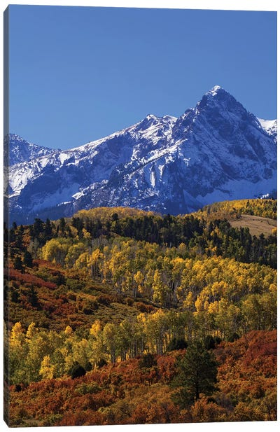USA, Colorado, San Juan Mountains. Mountain and forest in autumn. Canvas Art Print