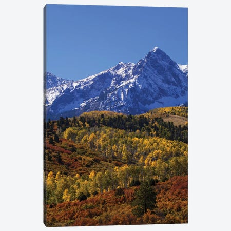 USA, Colorado, San Juan Mountains. Mountain and forest in autumn. Canvas Print #JYG130} by Jaynes Gallery Canvas Print