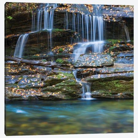USA, North Carolina, Great Smoky Mountains. Scenic of Tom Branch Falls. Canvas Print #JYG138} by Jaynes Gallery Canvas Art Print
