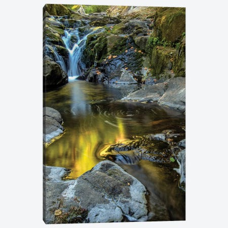 USA, Oregon, Florence. Waterfall in stream I Canvas Print #JYG143} by Jaynes Gallery Canvas Wall Art