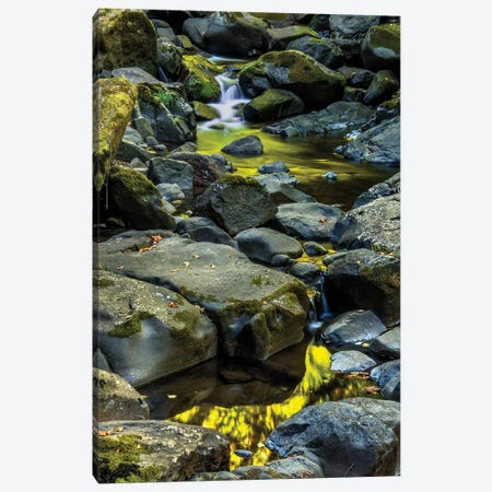 USA, Oregon, Florence. Waterfall in stream II Canvas Print #JYG144} by Jaynes Gallery Art Print