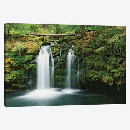 USA, Oregon, Umpqua River. Waterfall. Canvas Print #JYG149} by Jaynes Gallery Canvas Art