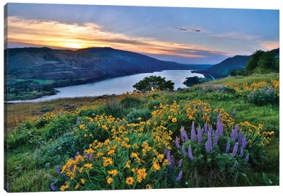 USA, Oregon. View of Lake Bonneville at sunrise. Canvas Art Print