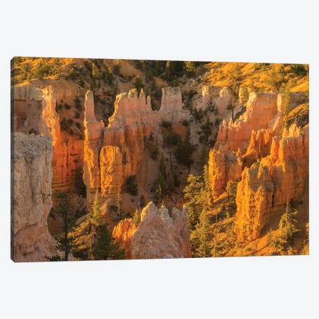 USA, Utah, Bryce Canyon National Park. Canyon overview. Canvas Print #JYG155} by Jaynes Gallery Canvas Artwork