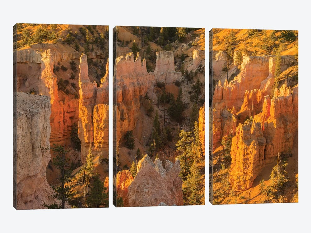 USA, Utah, Bryce Canyon National Park. Canyon overview. by Jaynes Gallery 3-piece Canvas Art Print