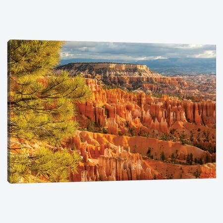 USA, Utah, Bryce Canyon National Park. Overview of canyon formations. Canvas Print #JYG156} by Jaynes Gallery Canvas Art