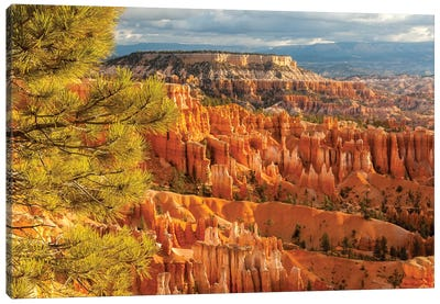 USA, Utah, Bryce Canyon National Park. Overview of canyon formations. Canvas Art Print