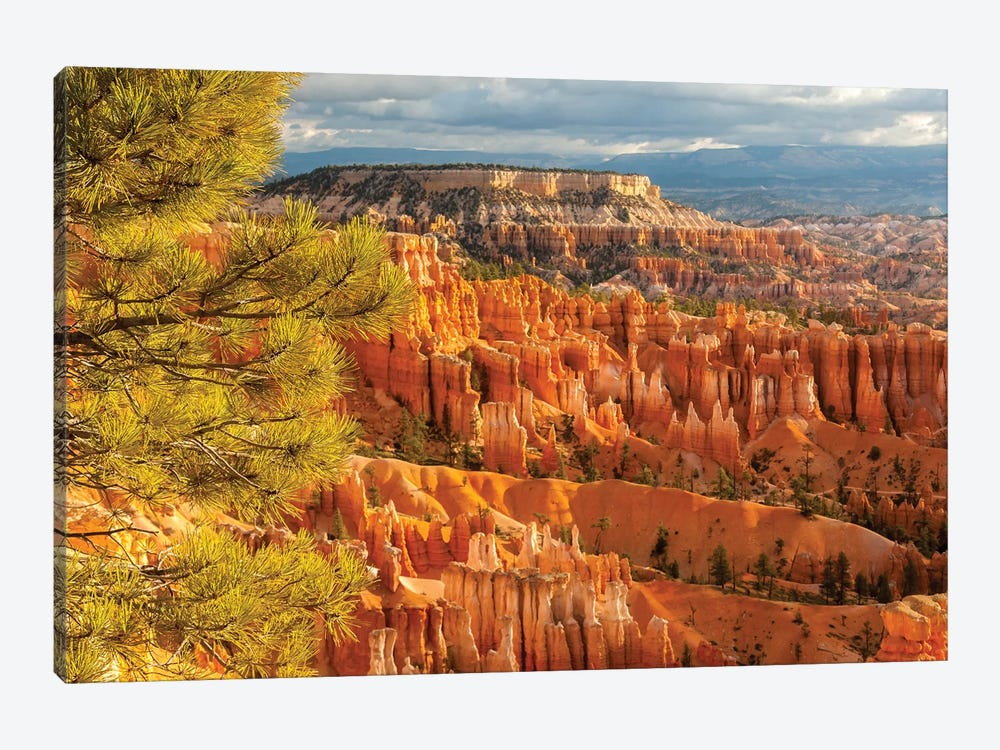 USA, Utah, Bryce Canyon National Park. Overview of canyon formations. by Jaynes Gallery 1-piece Canvas Wall Art