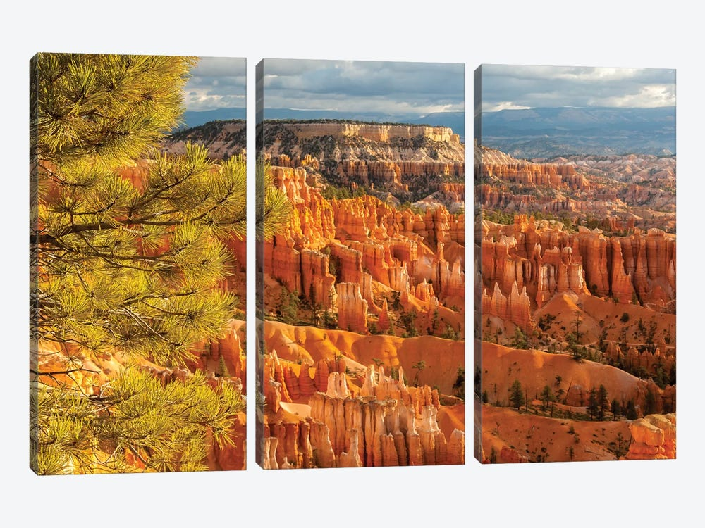 USA, Utah, Bryce Canyon National Park. Overview of canyon formations. by Jaynes Gallery 3-piece Canvas Wall Art
