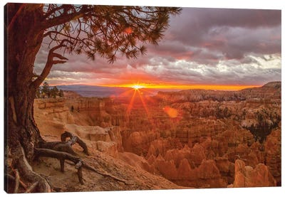 USA, Utah, Bryce Canyon National Park. Sunrise on canyon. Canvas Art Print