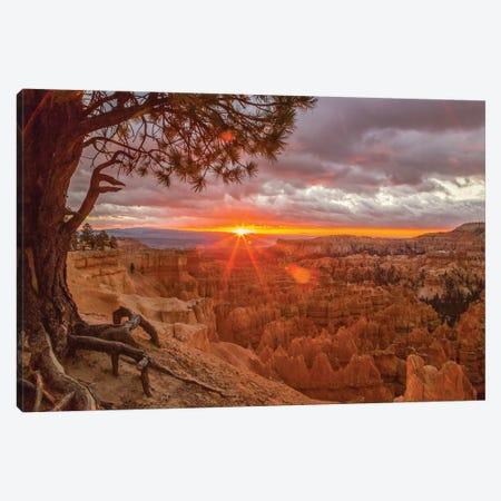 USA, Utah, Bryce Canyon National Park. Sunrise on canyon. Canvas Print #JYG158} by Jaynes Gallery Canvas Art Print