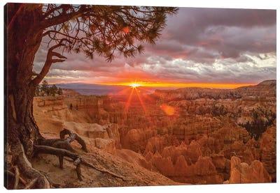 USA, Utah, Bryce Canyon National Park. Sunrise on canyon. Canvas Art Print