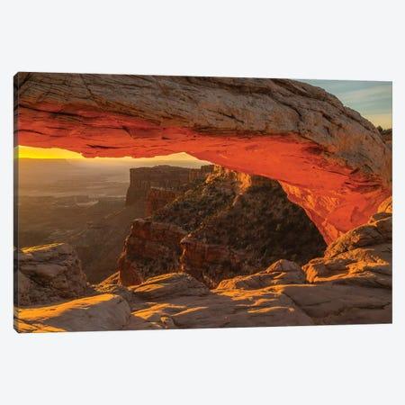 USA, Utah, Canyonlands National Park. Mesa Arch at sunrise. Canvas Print #JYG160} by Jaynes Gallery Canvas Artwork
