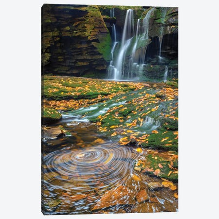 USA, West Virginia, Blackwater Falls State Park. Waterfall and whirlpool scenic. Canvas Print #JYG202} by Jaynes Gallery Canvas Print