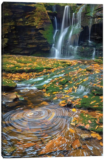 USA, West Virginia, Blackwater Falls State Park. Waterfall and whirlpool scenic. Canvas Art Print
