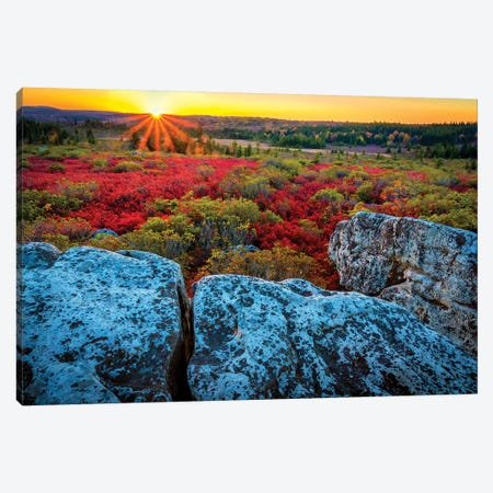 USA, West Virginia, Dolly Sods Wilderness Area. Sunset on tundra and rocks. Canvas Print #JYG203} by Jaynes Gallery Art Print