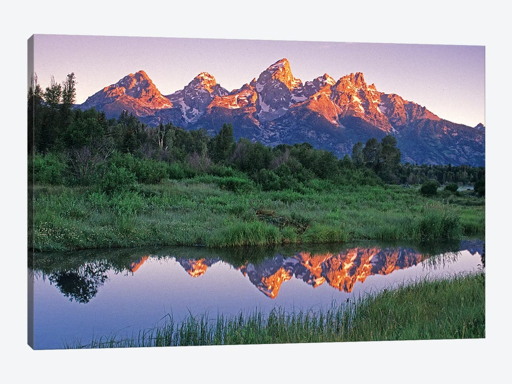 USA, Wyoming, Grand Teton National Park. Mountains reflect in beaver pond at sunrise. by Jaynes Gallery 1-piece Canvas Print