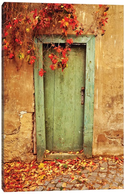 Czech Republic, Prague. Weathered door.  Canvas Art Print