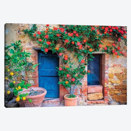 Italy, Val d' Orcia. two doors with vegetation  Canvas Print #JYG283} by Jaynes Gallery Canvas Print