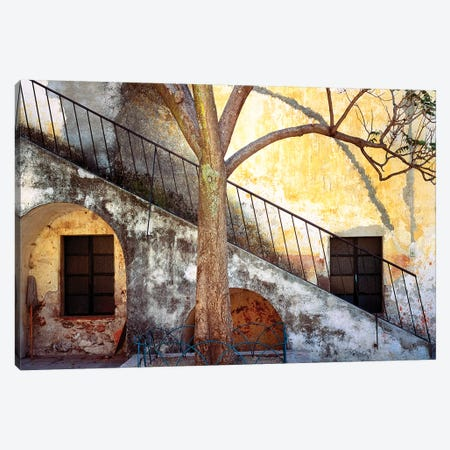 Mexico, Queretaro. Tree and weathered stairway.  Canvas Print #JYG304} by Jaynes Gallery Canvas Art Print