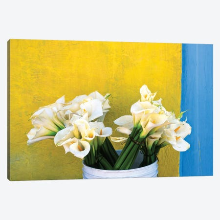 Mexico, Xico. Calla lilies and colorful wall.  Canvas Print #JYG312} by Jaynes Gallery Art Print