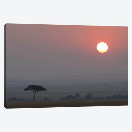 Africa, Tanzania, Ngorongoro Conservation Area. Savannah at sunset. 3-Piece Canvas #JYG395} by Jaynes Gallery Canvas Art