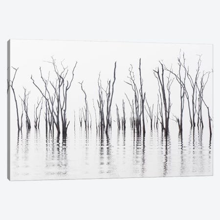 Africa, Zimbabwe, Matusadona National Park. Reflections on Lake Kariba. 3-Piece Canvas #JYG400} by Jaynes Gallery Canvas Art Print