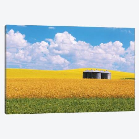 Canada, Manitoba, Bruxelles. Grain bins amid wheat and canola crops. Canvas Print #JYG413} by Jaynes Gallery Canvas Art