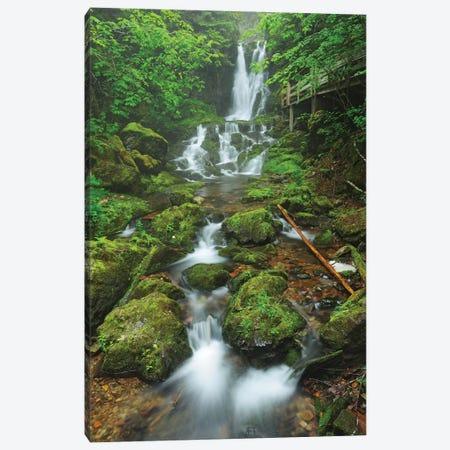Canada, New Brunswick, Fundy National Park. Dickson Creek waterfall cascade. Canvas Print #JYG442} by Jaynes Gallery Canvas Art Print