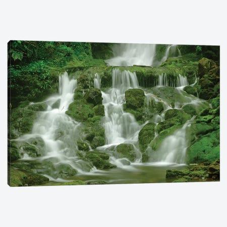 Canada, New Brunswick, Fundy National Park. Dickson Creek waterfall. Canvas Print #JYG443} by Jaynes Gallery Canvas Print