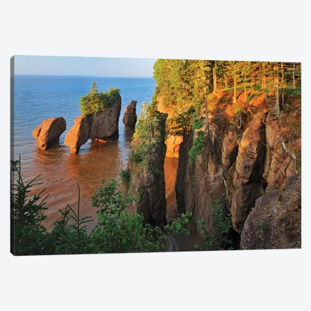 Canada, New Brunswick, The Rocks Provincial Park. Cape Hopewell rocks at sunrise at low tide. Canvas Print #JYG446} by Jaynes Gallery Canvas Wall Art