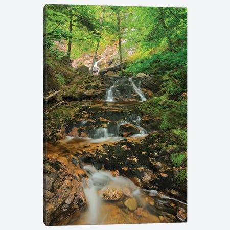 Canada, Nova Scotia, Cape Breton Highlands National Park. Beulach Ban Falls cascade. Canvas Print #JYG447} by Jaynes Gallery Canvas Artwork