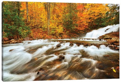 Canada, Ontario, Rosseau. Skeleton River at Hatchery Falls in autumn. Canvas Art Print